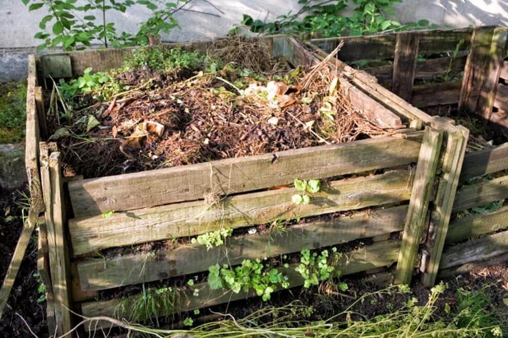organski kompost