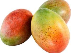 Organski Mango 500g