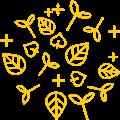 Organsko MikroBilje