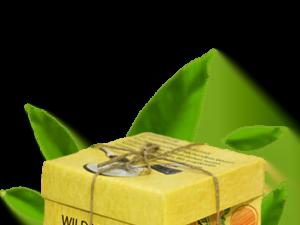 Organski Čaj Divlja Jabuka Organic Tea