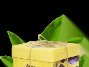 Organski Čaj Divlja Kupina Organic Tea