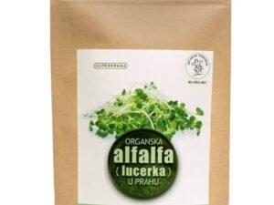 Organska Alfalfa Prah Superhrana DTC 100g